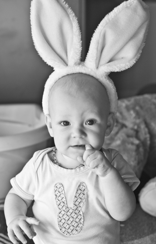 eco easter baby bunny ears
